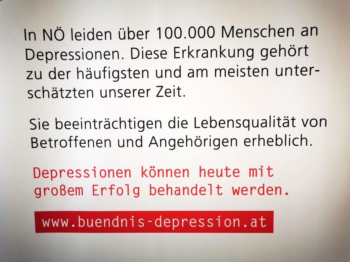 Vortrag Depression 2020
